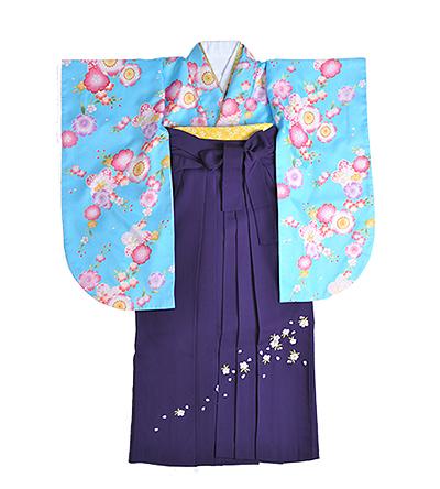 卒業袴 / 水色 / 天色 / 紫 / 刺繍