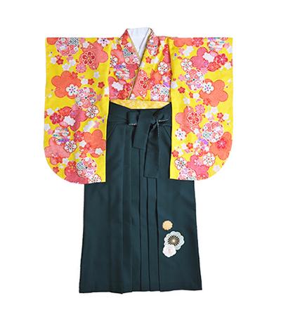 卒業袴 / 黄色 / 緑 / 刺繍