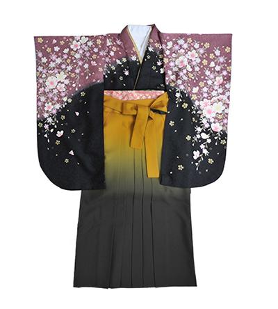 卒業袴 / 黒×紫鳶色 /   黄×グレー / グラデーション