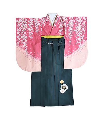 卒業袴 / ピンク / 紅梅色 / 緑 / 刺繍