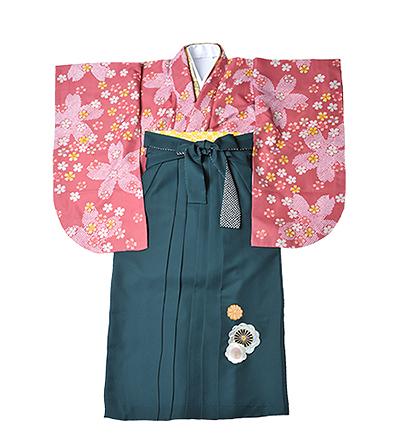 卒業袴 / ピンク / 梅重色 / 桜 / 緑 / 刺繍