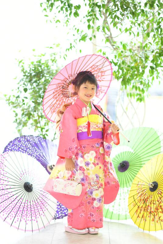 七五三 7歳 着物 ピンク 和傘 自然光 華やか