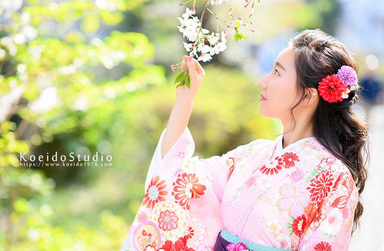 大学生 卒業袴 着物 ピンク 袴 紫 桜 ロケ写真